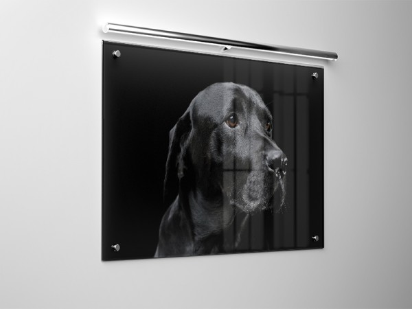 Bilder auf Acrylglas